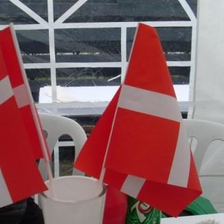 *The Danish Flag*