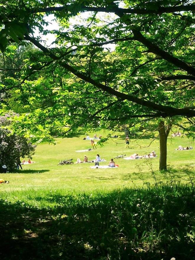 Botanical Garden Aarhus (2)