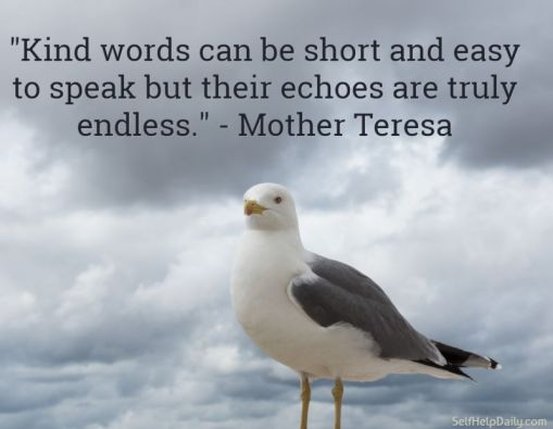 Quote-About-Kindness-by-Mother-Teresa