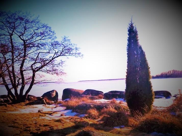 Isa Sweden 9 (2)