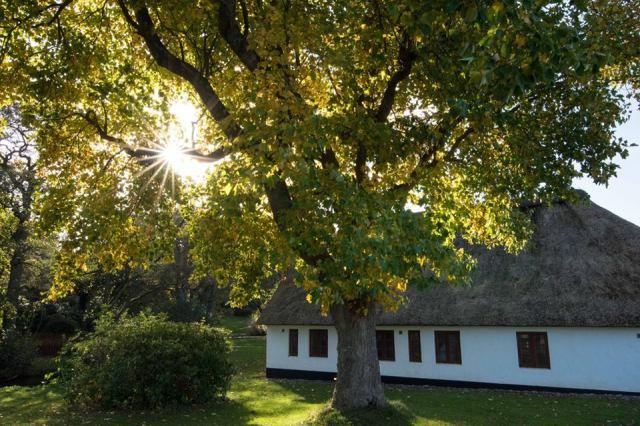 wp-autumn-photo-3