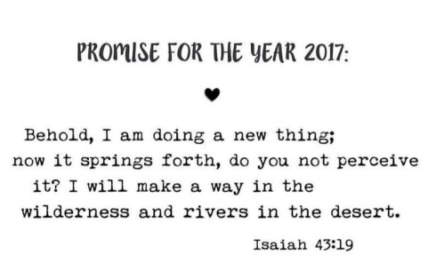 new-year-promise-2