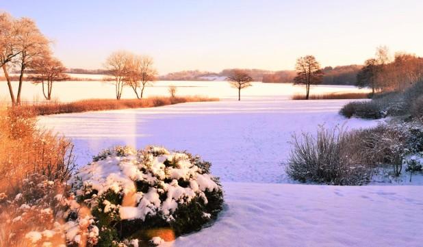 snow-denise