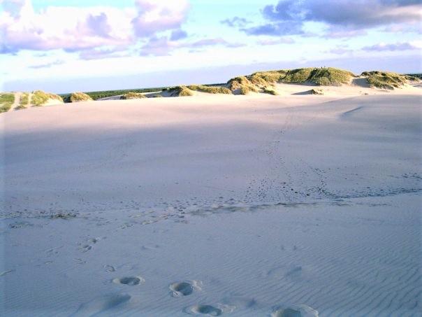 beach 2 (2)
