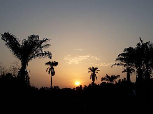 Sunset pix