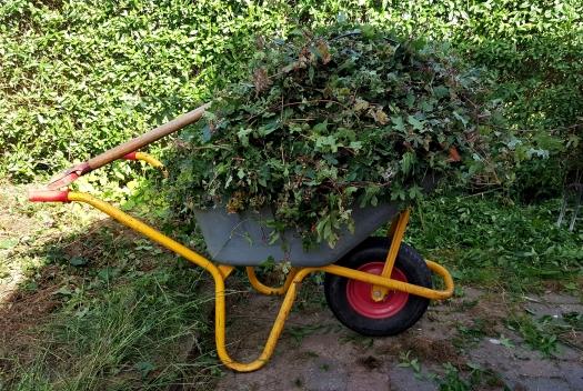 *Wheelbarrow*