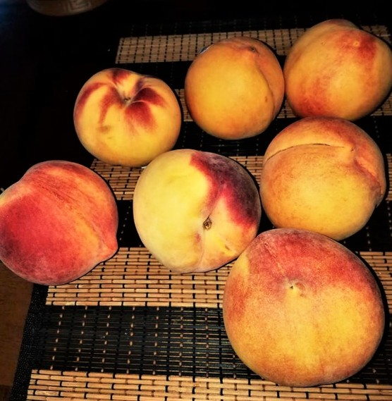 fruits (2).jpg