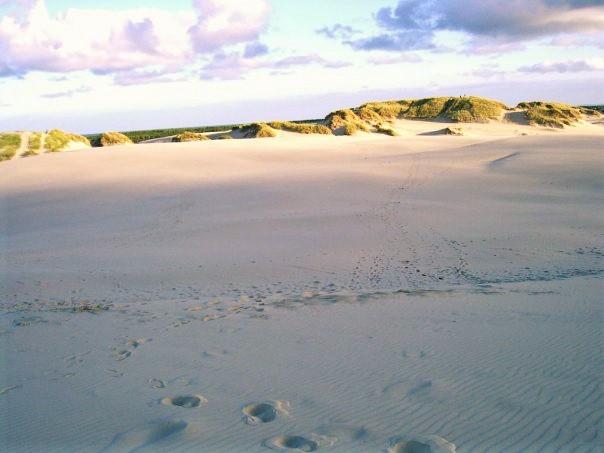 sand 3 (2)