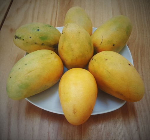 mango 4