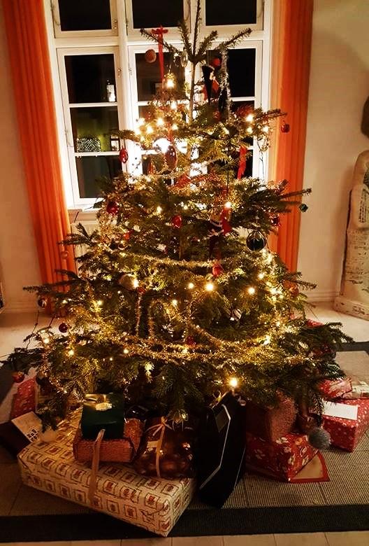 Xmas tree (3)